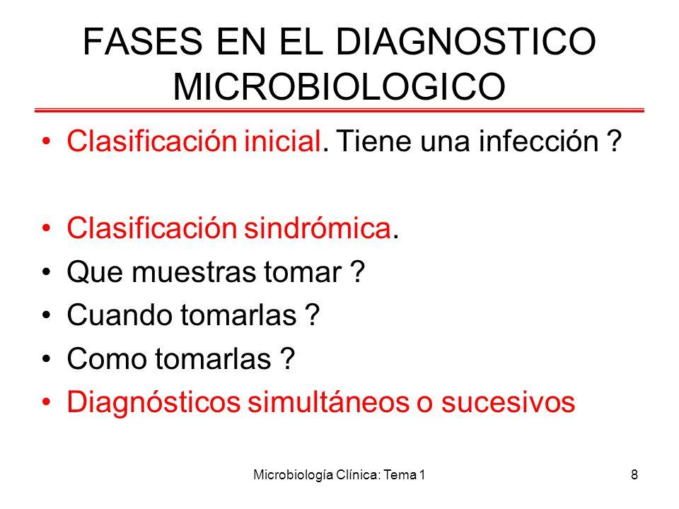 Microbiología Clínica: Tema 19 FASES DEL DIAGNÓSTICO MICROBIOLÓGICO Fase pre analítica: –Proveer información sobre recogida/transporte y conservación de las muestras.