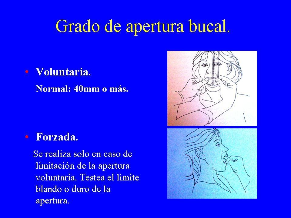 EXAMEN PERIODONTAL FUNCIONAL OBJETIVO: Correlacionar movilidad dentaria con sobrecarga funcional oclusal.
