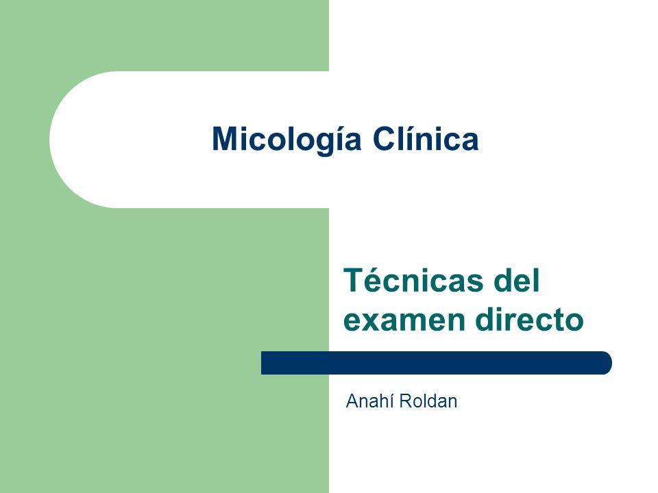 Micología Clínica Técnicas del examen directo Anahí Roldan