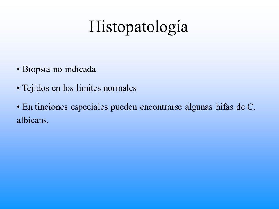 Histopatología Biopsia no indicada Tejidos en los limites normales En tinciones especiales pueden encontrarse algunas hifas de C. albicans.
