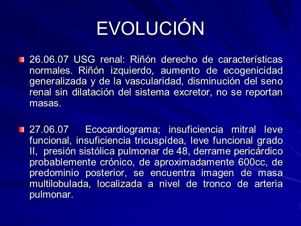 EVOLUCIÓN 26.06.07 USG renal: Riñón derecho de características normales.Riñón izquierdo, aumento de ecogenicidad generalizada y de la vascularidad, di