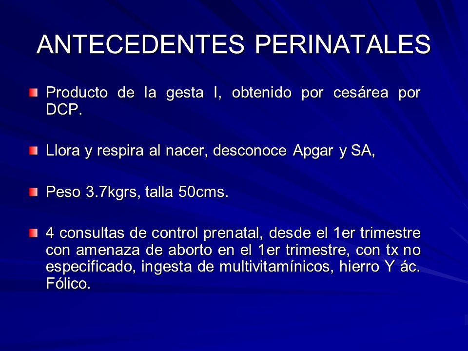 DIAGNOSTICOS PRESUNCIONALES Sx Febril Sx.anémico Sx.