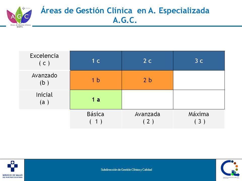 Subdirección de Gestión Clínica y Calidad Excelencia ( c ) 1 c2 c3 c Avanzado (b ) 1 b2 b Inicial (a ) 1 a Básica ( 1 ) Avanzada ( 2 ) Máxima ( 3 ) Áreas de Gestión Clínica en A.