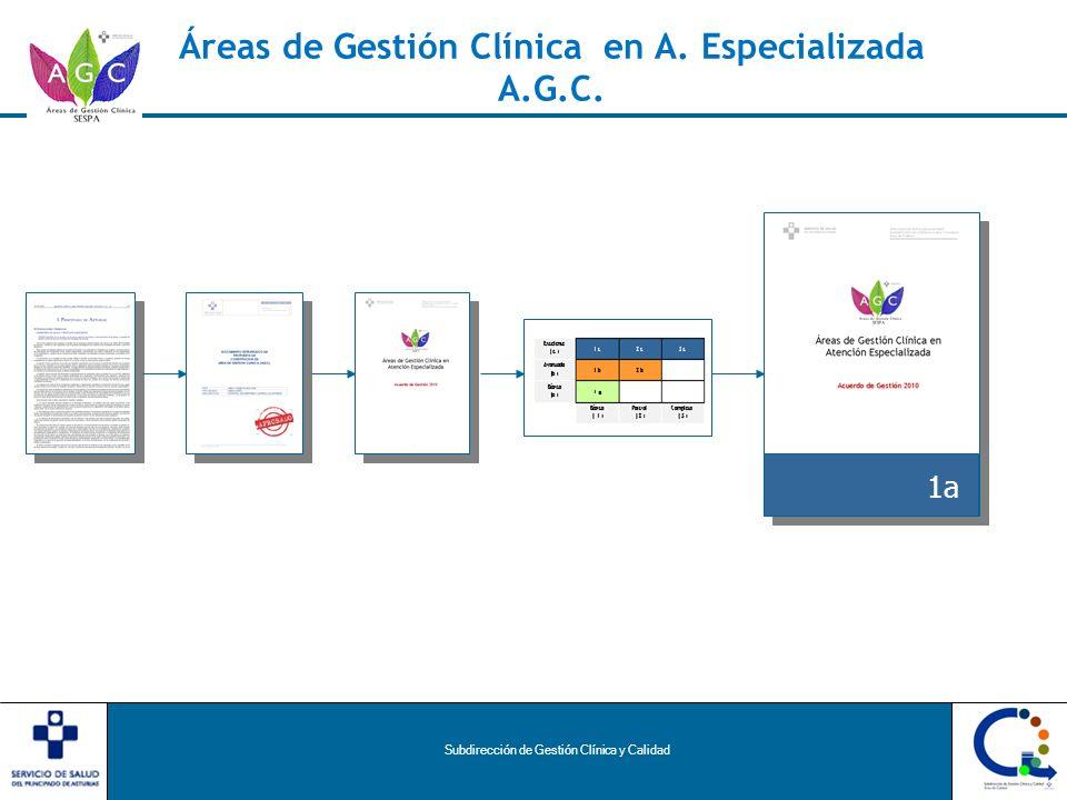 Subdirección de Gestión Clínica y Calidad Áreas de Gestión Clínica en A. Especializada A.G.C. 1a
