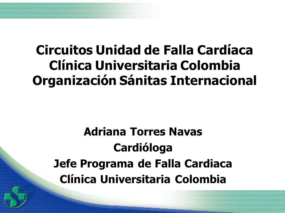 PROCEDENCIA DE LOS PACIENTES Hospitalizacion Unidades de Atención Básica Cardiología Medicina Interna Otras instituciones
