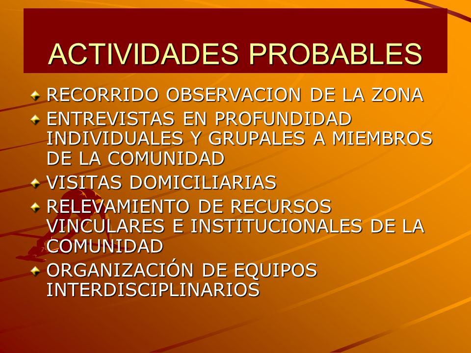 ACTIVIDADES PROBABLES RECORRIDO OBSERVACION DE LA ZONA ENTREVISTAS EN PROFUNDIDAD INDIVIDUALES Y GRUPALES A MIEMBROS DE LA COMUNIDAD VISITAS DOMICILIARIAS RELEVAMIENTO DE RECURSOS VINCULARES E INSTITUCIONALES DE LA COMUNIDAD ORGANIZACIÓN DE EQUIPOS INTERDISCIPLINARIOS