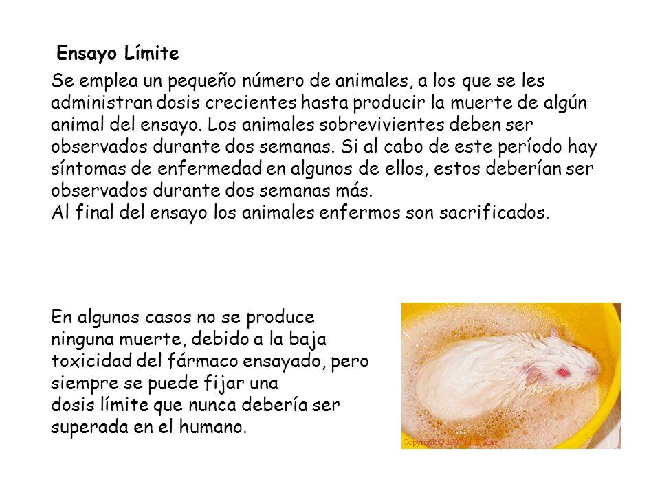 Ensayo Límite Se emplea un pequeño número de animales, a los que se les administran dosis crecientes hasta producir la muerte de algún animal del ensa