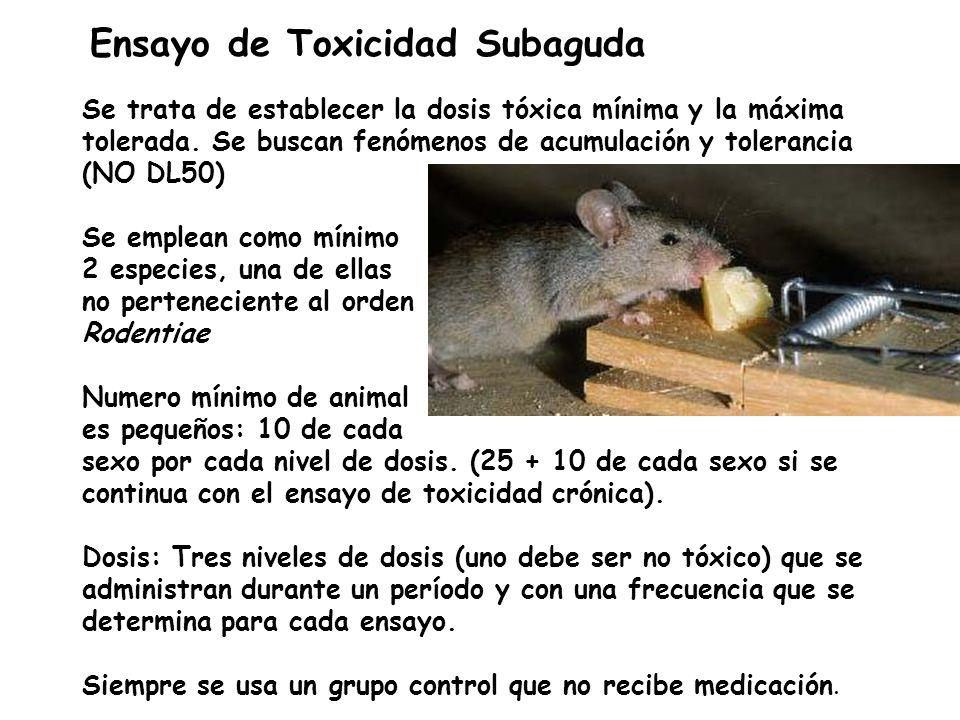 Ensayo de Toxicidad Subaguda Se trata de establecer la dosis tóxica mínima y la máxima tolerada. Se buscan fenómenos de acumulación y tolerancia. (NO