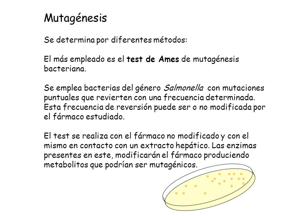 Se determina por diferentes métodos: El más empleado es el test de Ames de mutagénesis bacteriana. Se emplea bacterias del género Salmonella con mutac