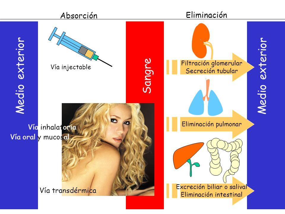 Medio exterior Sangre Absorción Eliminación Filtración glomerular Secreción tubular Eliminación pulmonar Excreción biliar o salival Eliminación intest