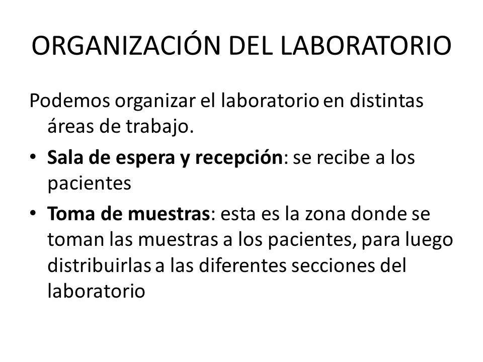 ORGANIZACIÓN DEL LABORATORIO Podemos organizar el laboratorio en distintas áreas de trabajo. Sala de espera y recepción: se recibe a los pacientes Tom