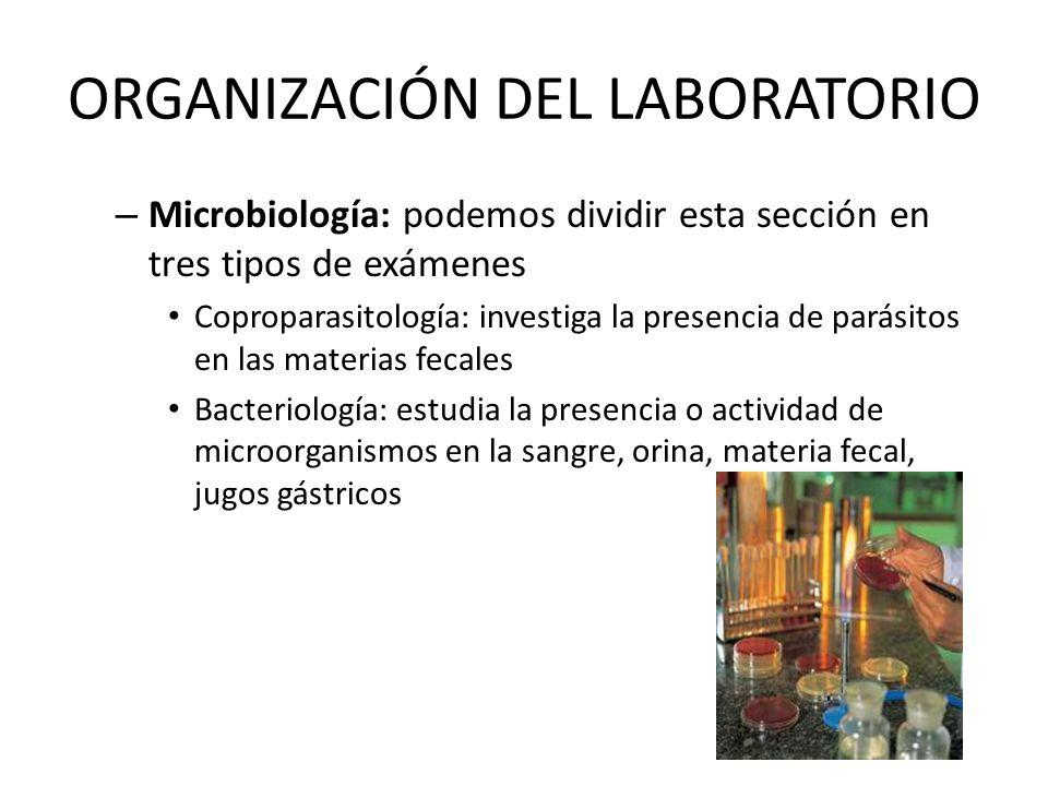 ORGANIZACIÓN DEL LABORATORIO – Microbiología: podemos dividir esta sección en tres tipos de exámenes Coproparasitología: investiga la presencia de par