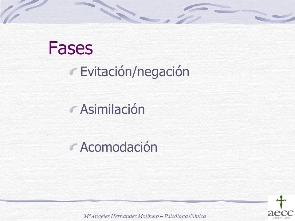 Fases Evitación/negación Asimilación Acomodación Mª Ángeles Hernández Molinero – Psicóloga Clínica