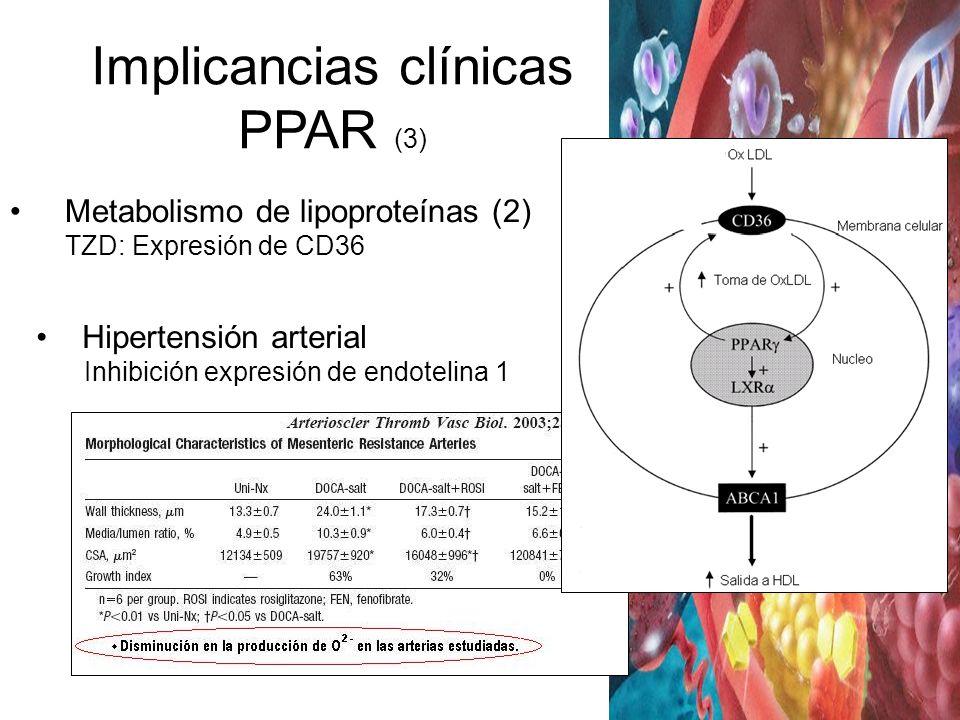 Hipertensión arterial Inhibición expresión de endotelina 1 Metabolismo de lipoproteínas (2) TZD: Expresión de CD36 Implicancias clínicas PPAR (3)