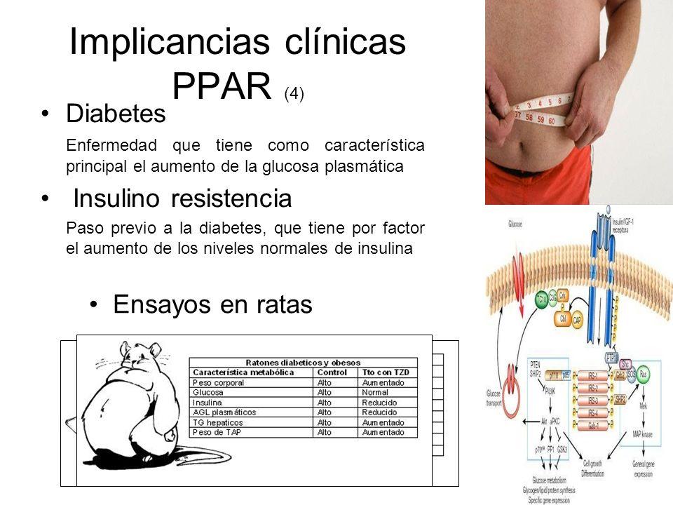Implicancias clínicas PPAR (4) Diabetes Enfermedad que tiene como característica principal el aumento de la glucosa plasmática Insulino resistencia Pa
