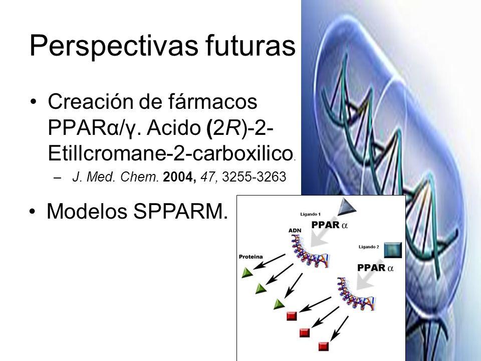 Perspectivas futuras Creación de fármacos PPARα/γ. Acido (2R)-2- Etillcromane-2-carboxilico. – J. Med. Chem. 2004, 47, 3255-3263 Modelos SPPARM.