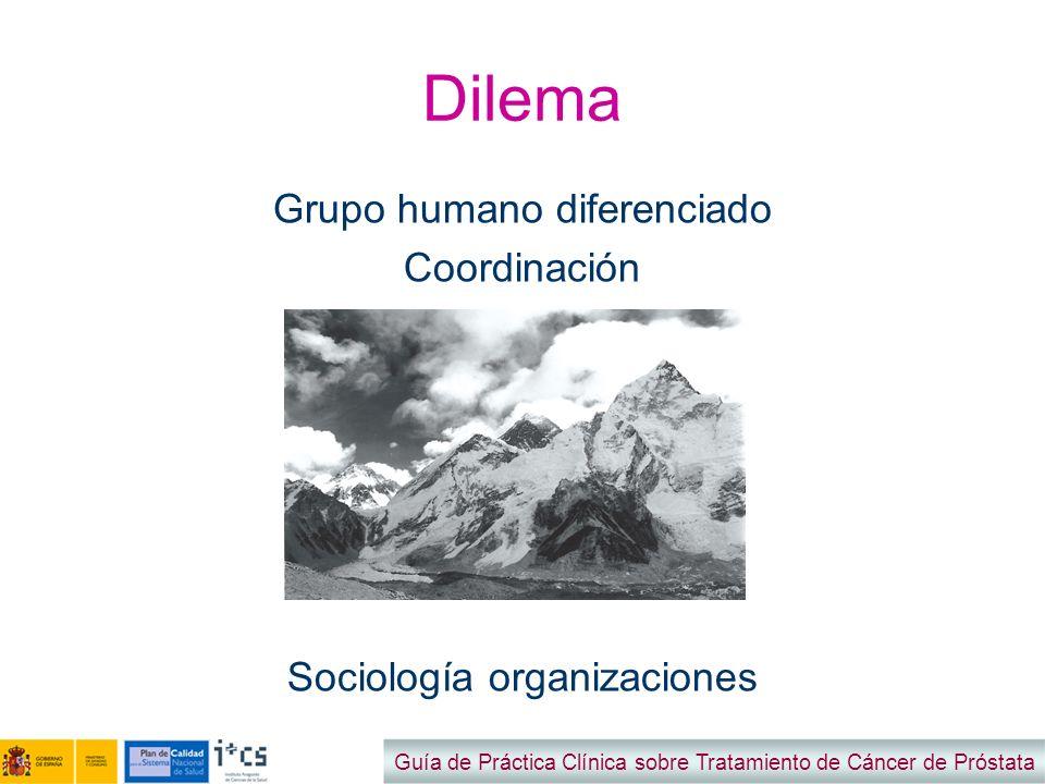 Dilema Grupo humano diferenciado Coordinación Sociología organizaciones Guía de Práctica Clínica sobre Tratamiento de Cáncer de Próstata