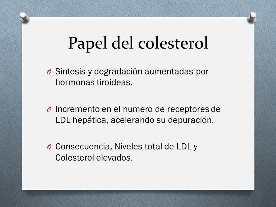 Papel del colesterol O Sintesis y degradación aumentadas por hormonas tiroideas. O Incremento en el numero de receptores de LDL hepática, acelerando s