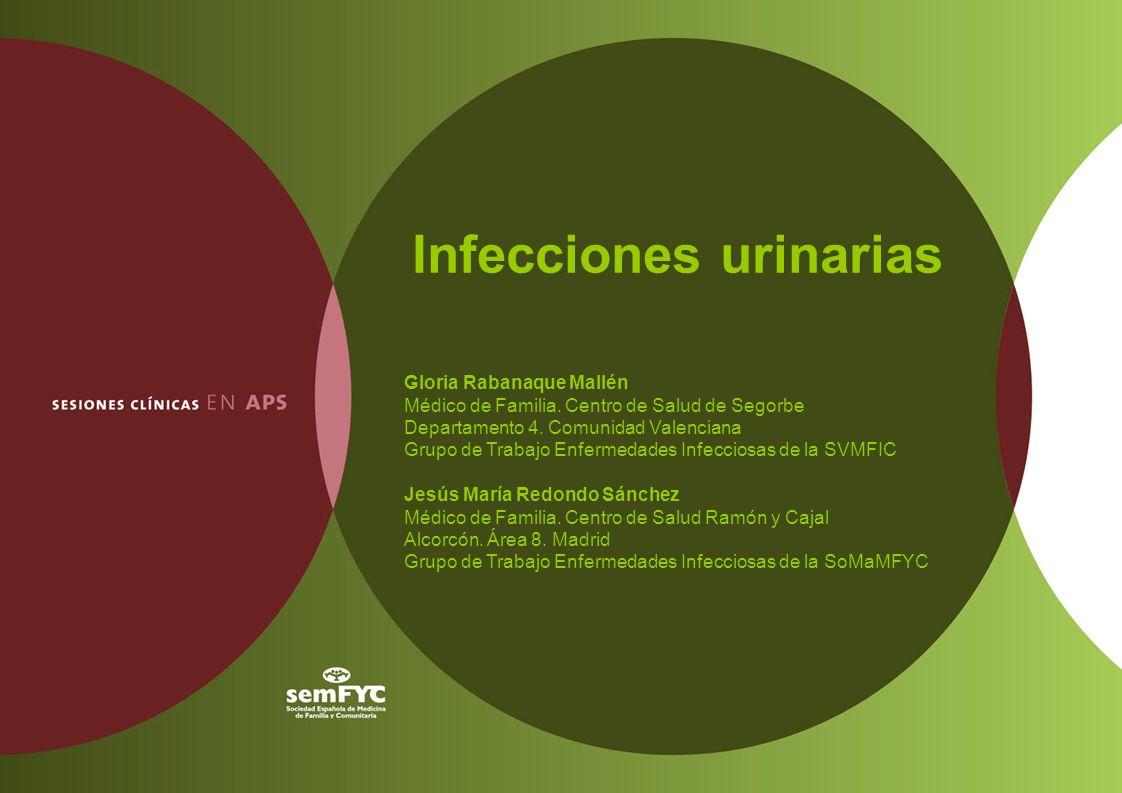 Infecciones urinarias Gloria Rabanaque Mallén Médico de Familia. Centro de Salud de Segorbe Departamento 4. Comunidad Valenciana Grupo de Trabajo Enfe