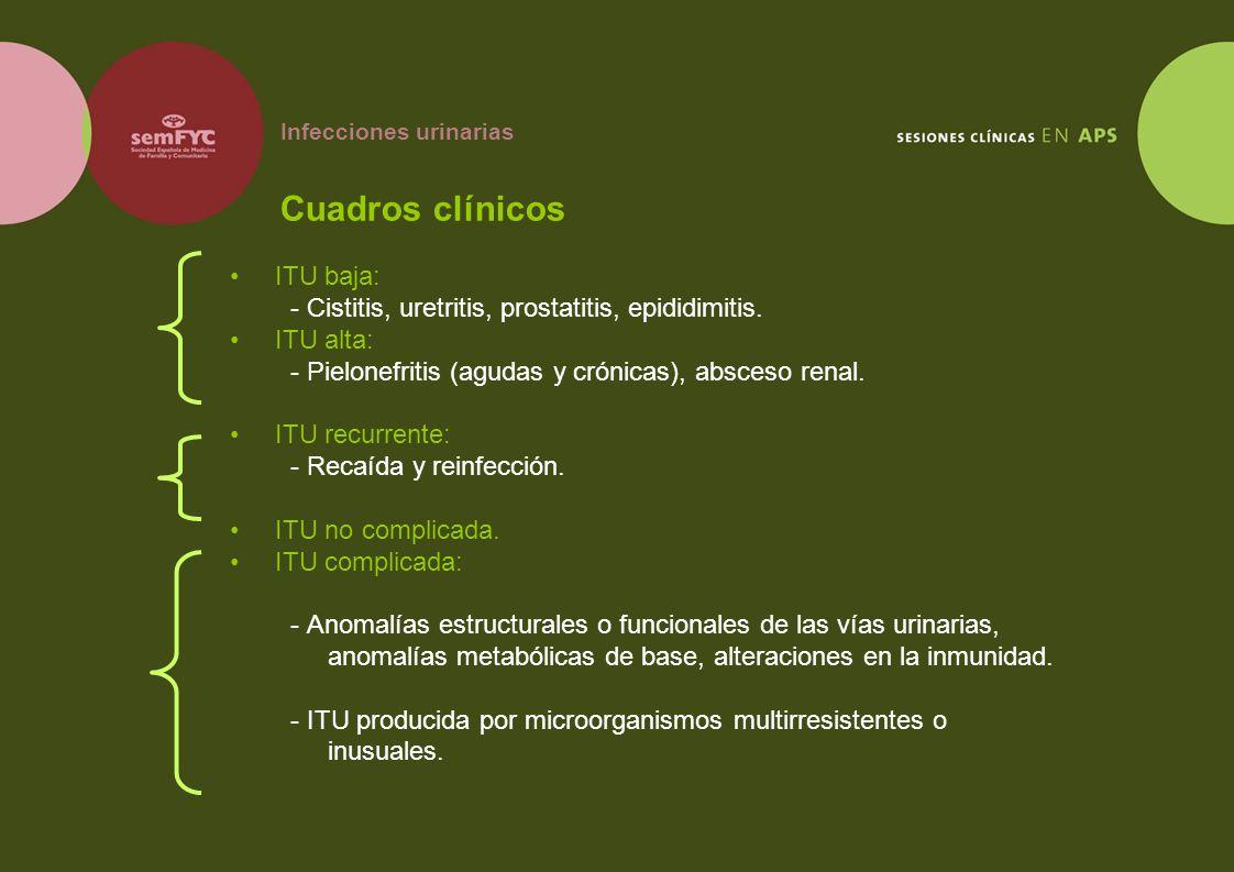 Infecciones urinarias Cuadros clínicos ITU baja: - Cistitis, uretritis, prostatitis, epididimitis. ITU alta: - Pielonefritis (agudas y crónicas), absc