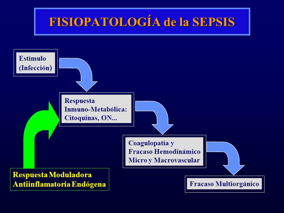 FISIOPATOLOGÍA de la SEPSIS Estímulo (Infección ) Respuesta Inmuno-Metabólica: Citoquinas, ON... Coagulopatía y Fracaso Hemodinámico Micro y Macrovasc