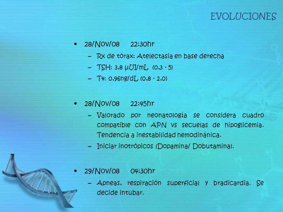 EVOLUCIONES 28/Nov/08 22:30hr –Rx de tórax: Atelectasia en base derecha –TSH: 3,8 μUI/mL (0,3 - 5) –T4: 0,96ng/dL (0,8 - 2,0) 28/Nov/0822:45hr –Valorado por neonatología se considera cuadro compatible con APN vs secuelas de hipoglicemia.