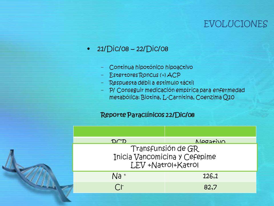 EVOLUCIONES 21/Dic/08 – 22/Dic/08 Continua hipotónico hipoactivo Estertores Roncus (+) ACP Respuesta débil a estimulo táctil P/ Conseguir medicación empírica para enfermedad metabólica: Biotina, L-Carnitina, Coenzima Q10 Reporte Paraclínicos 22/Dic/08 PCRNegativo Hb10.4 Glucosa Basal142 mg/dl Na + 126,1 Cl - 82,7 Transfunsión de GR Inicia Vancomicina y Cefepime LEV +Natrol+Katrol
