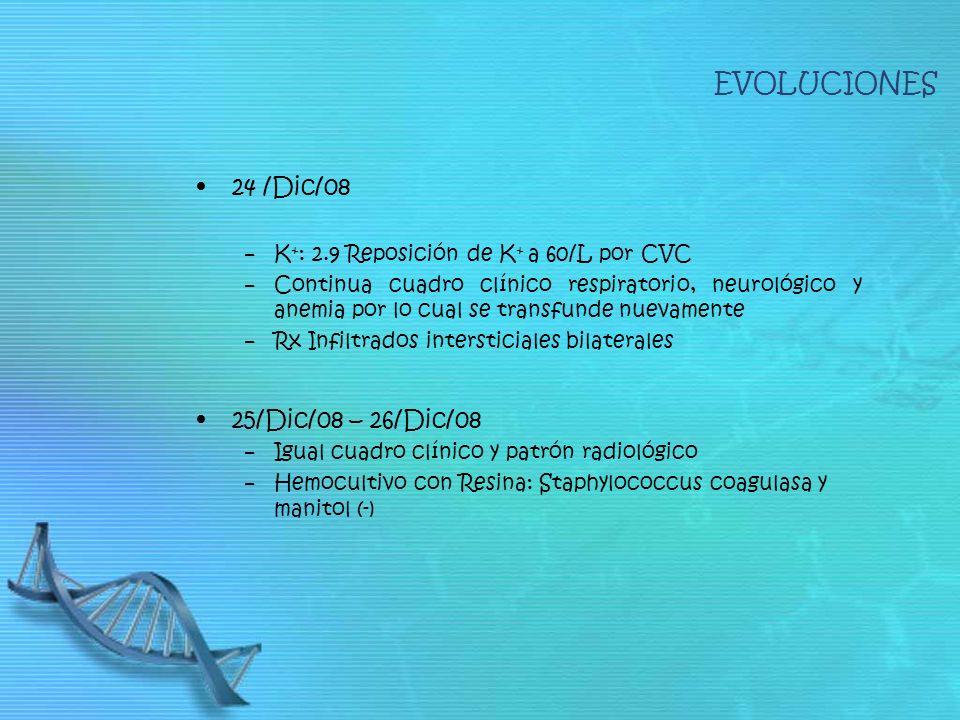 24 /Dic/08 K + : 2.9 Reposición de K + a 60/L por CVC Continua cuadro clínico respiratorio, neurológico y anemia por lo cual se transfunde nuevamente Rx Infiltrados intersticiales bilaterales 25/Dic/08 – 26/Dic/08 Igual cuadro clínico y patrón radiológico Hemocultivo con Resina: Staphylococcus coagulasa y manitol (-) EVOLUCIONES