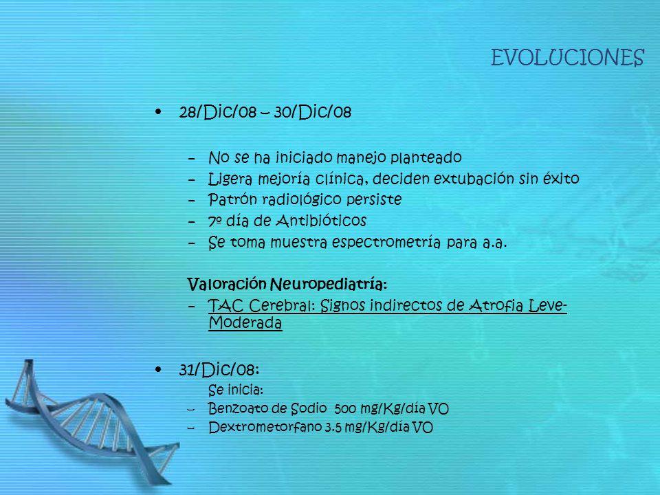 28/Dic/08 – 30/Dic/08 No se ha iniciado manejo planteado Ligera mejoría clínica, deciden extubación sin éxito Patrón radiológico persiste 7º día de An