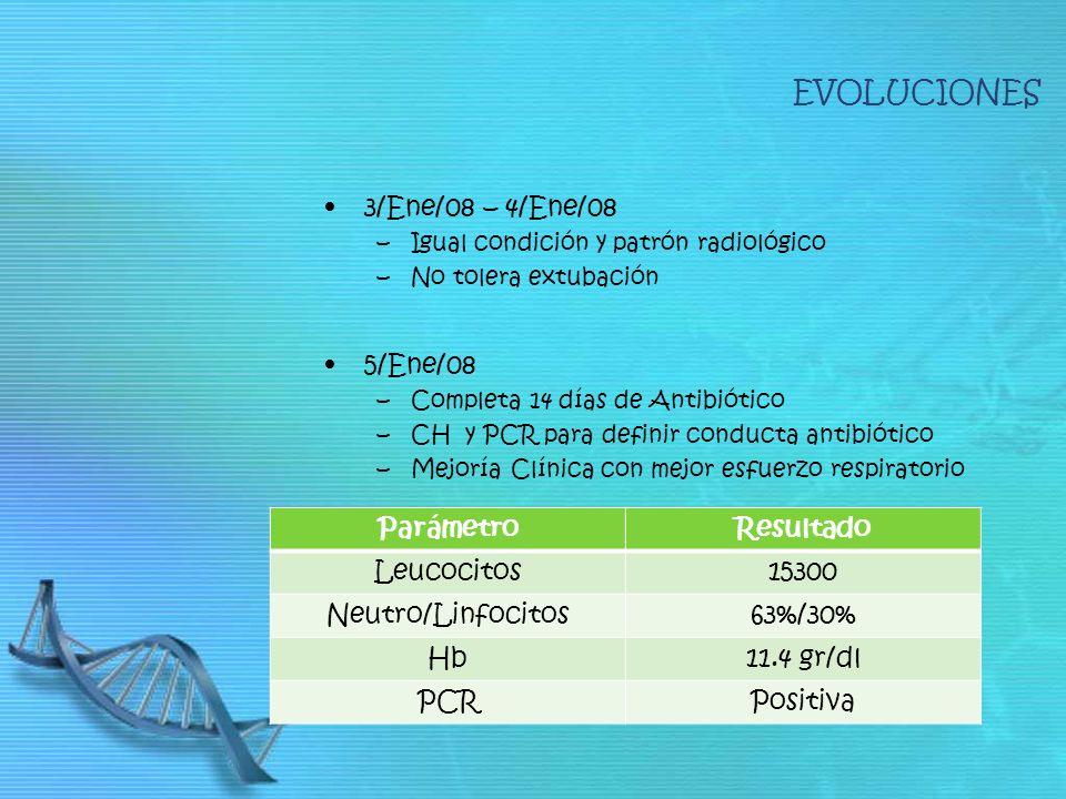 3/Ene/08 – 4/Ene/08 –Igual condición y patrón radiológico –No tolera extubación 5/Ene/08 –Completa 14 días de Antibiótico –CH y PCR para definir conducta antibiótico –Mejoría Clínica con mejor esfuerzo respiratorio EVOLUCIONES ParámetroResultado Leucocitos15300 Neutro/Linfocitos63%/30% Hb11.4 gr/dl PCRPositiva