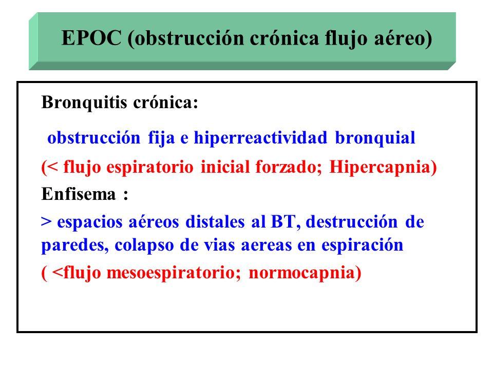 Bronquitis crónica: obstrucción fija e hiperreactividad bronquial (< flujo espiratorio inicial forzado; Hipercapnia) Enfisema : > espacios aéreos dist
