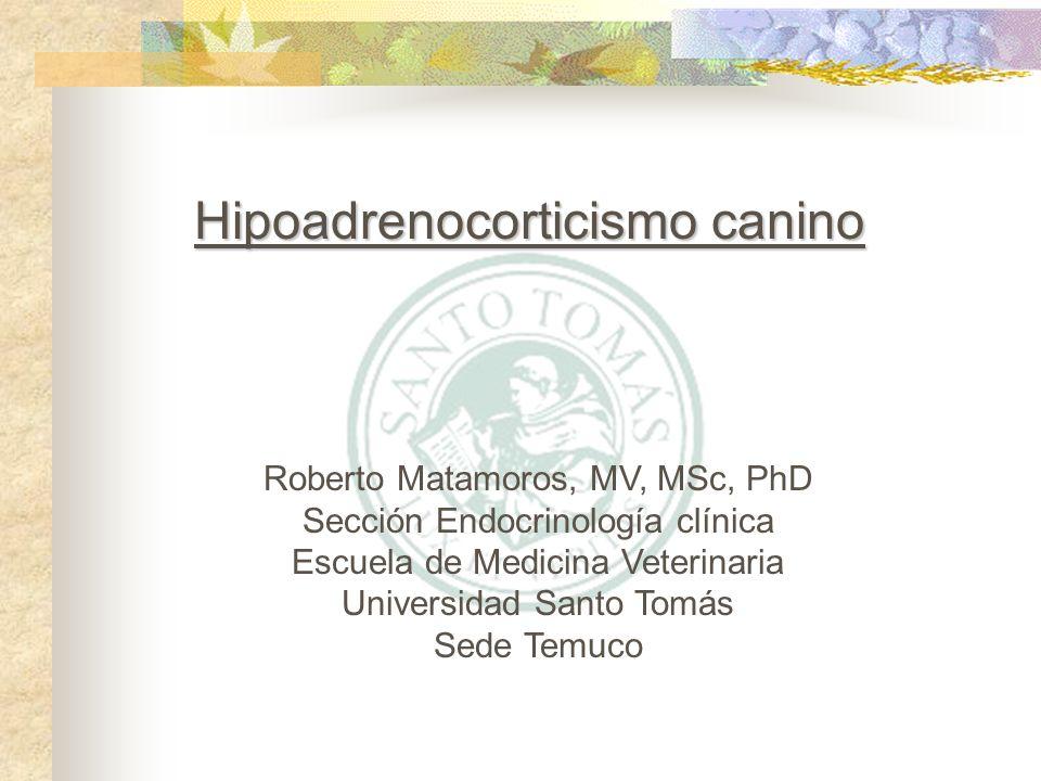 Hipoadrenocorticismo canino Roberto Matamoros, MV, MSc, PhD Sección Endocrinología clínica Escuela de Medicina Veterinaria Universidad Santo Tomás Sed