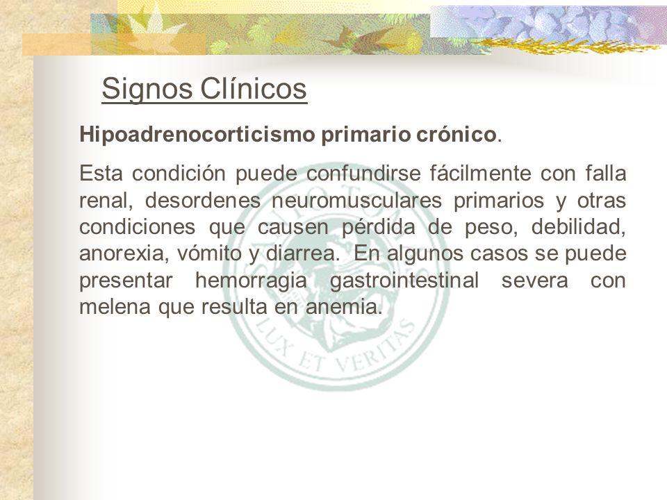 Signos Clínicos Esta condición puede confundirse fácilmente con falla renal, desordenes neuromusculares primarios y otras condiciones que causen pérdi