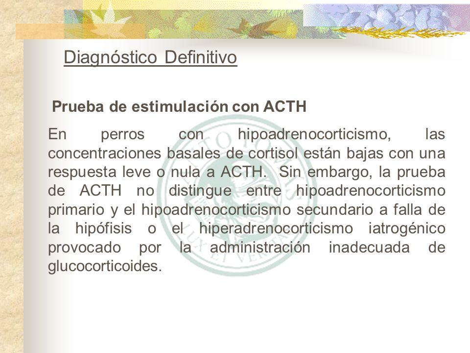 Prueba de estimulación con ACTH Diagnóstico Definitivo En perros con hipoadrenocorticismo, las concentraciones basales de cortisol están bajas con una
