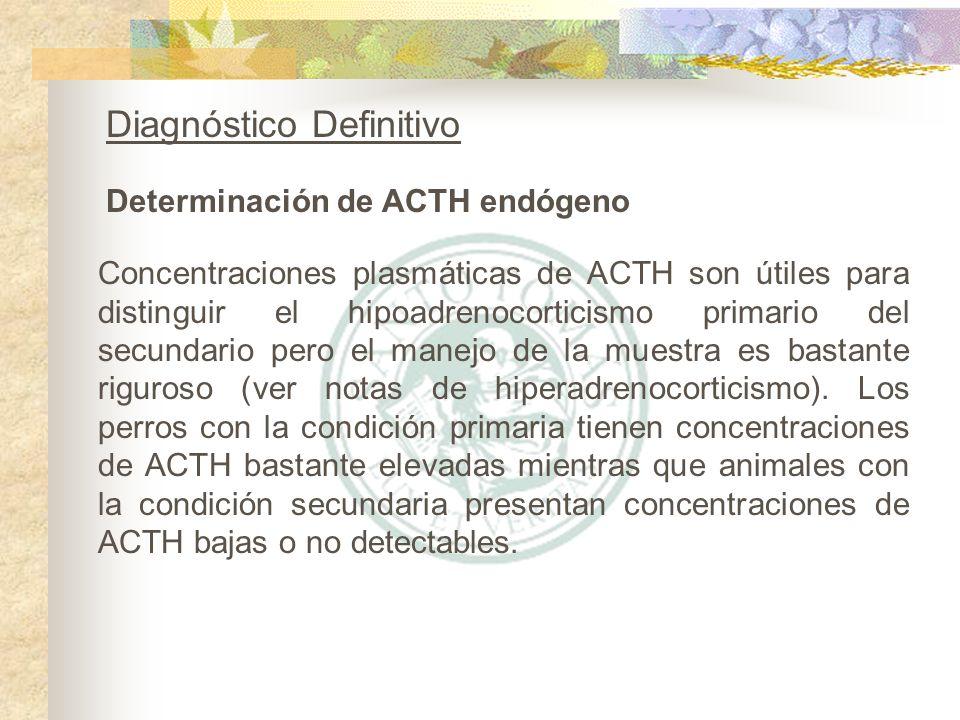 Determinación de ACTH endógeno Diagnóstico Definitivo Concentraciones plasmáticas de ACTH son útiles para distinguir el hipoadrenocorticismo primario