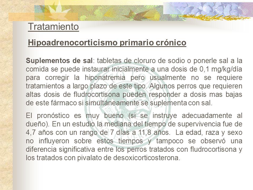Tratamiento Hipoadrenocorticismo primario crónico Suplementos de sal: tabletas de cloruro de sodio o ponerle sal a la comida se puede instaurar inicia