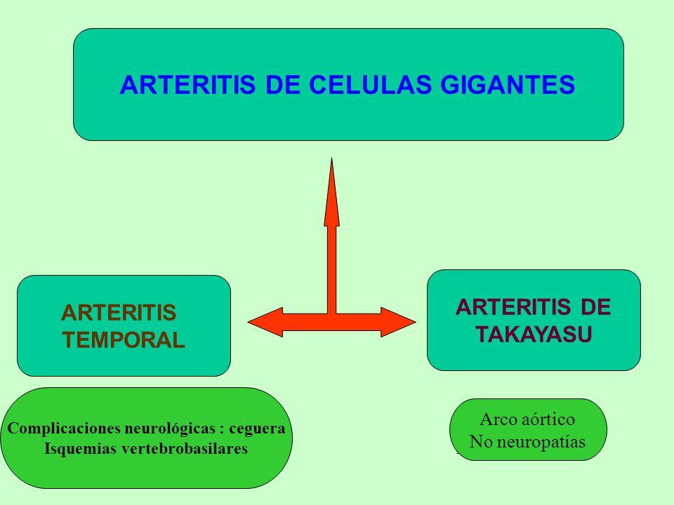 Entidades que pueden simular una Vascultis Sistémica