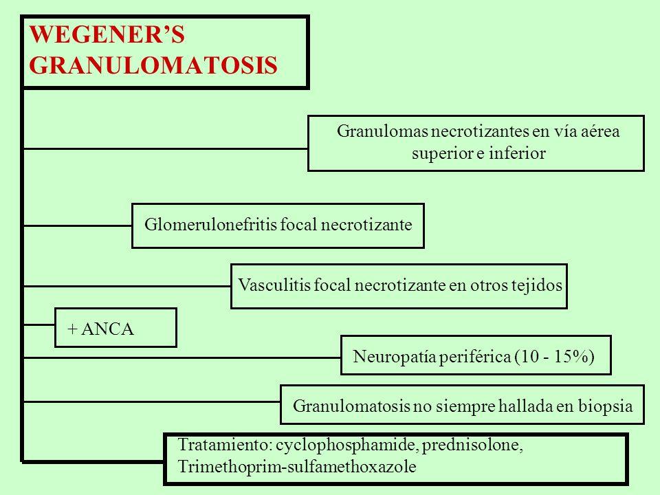 Criterios para la clasificación de la granulomatosis de Wegener (American College of Rheumatology, 1990) 1.Inflamación nasal u oral. 2.Rx Tórax anorma