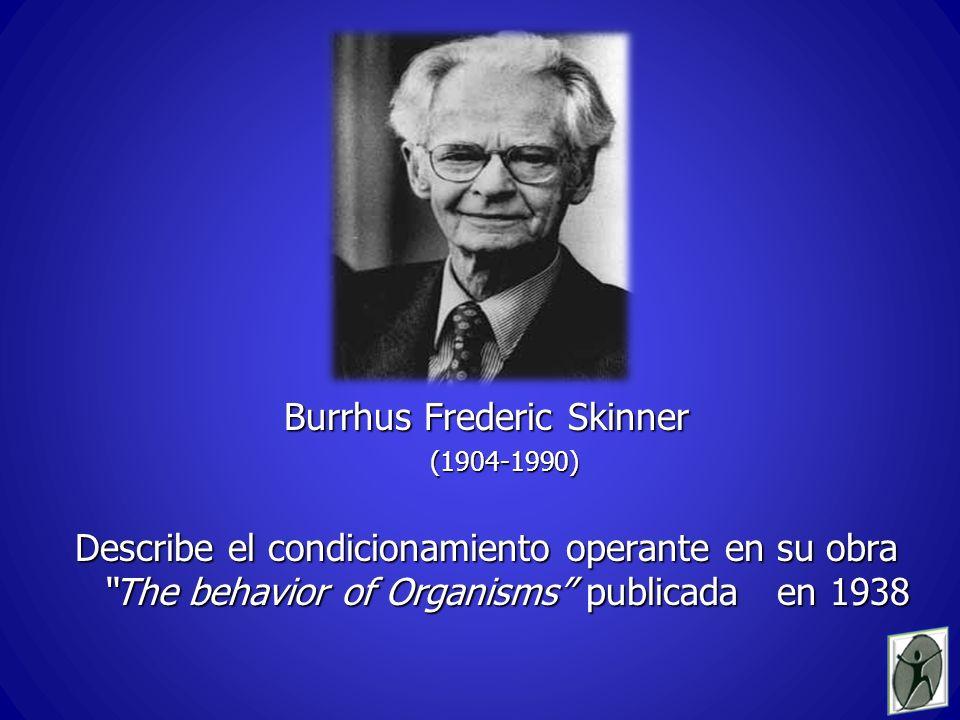 Burrhus Frederic Skinner (1904-1990) Describe el condicionamiento operante en su obra The behavior of Organisms publicada en 1938