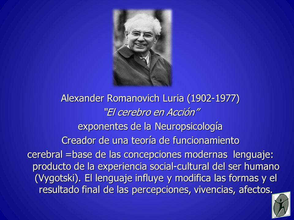 Alexander Romanovich Luria (1902-1977) El cerebro en Acción exponentes de la Neuropsicología Creador de una teoría de funcionamiento cerebral =base de las concepciones modernas lenguaje: producto de la experiencia social-cultural del ser humano (Vygotski).