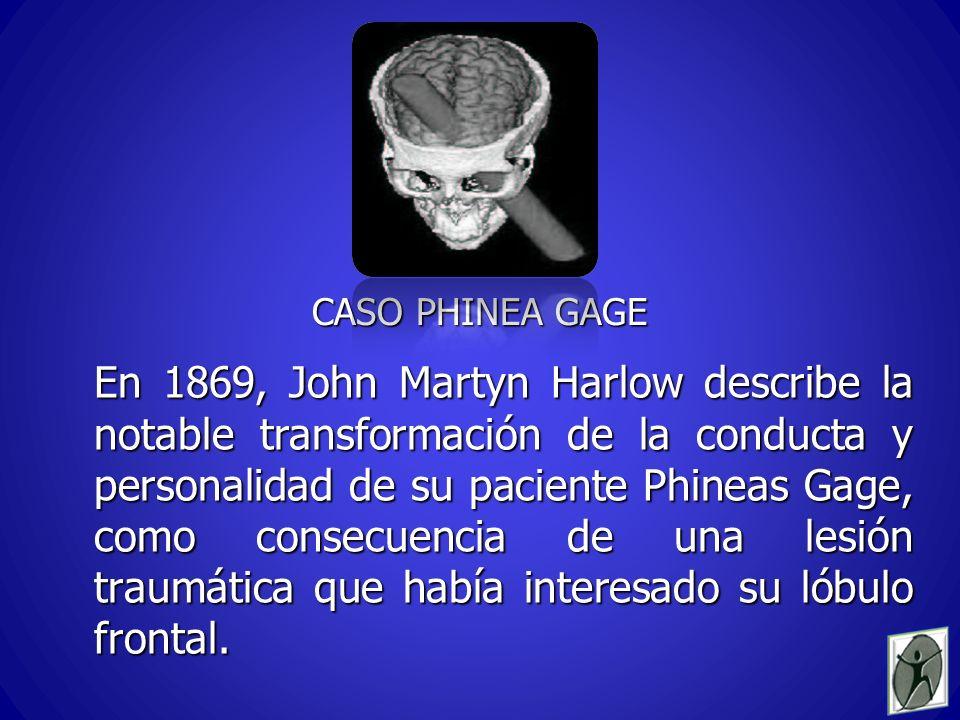 CASO PHINEA GAGE En 1869, John Martyn Harlow describe la notable transformación de la conducta y personalidad de su paciente Phineas Gage, como consecuencia de una lesión traumática que había interesado su lóbulo frontal.