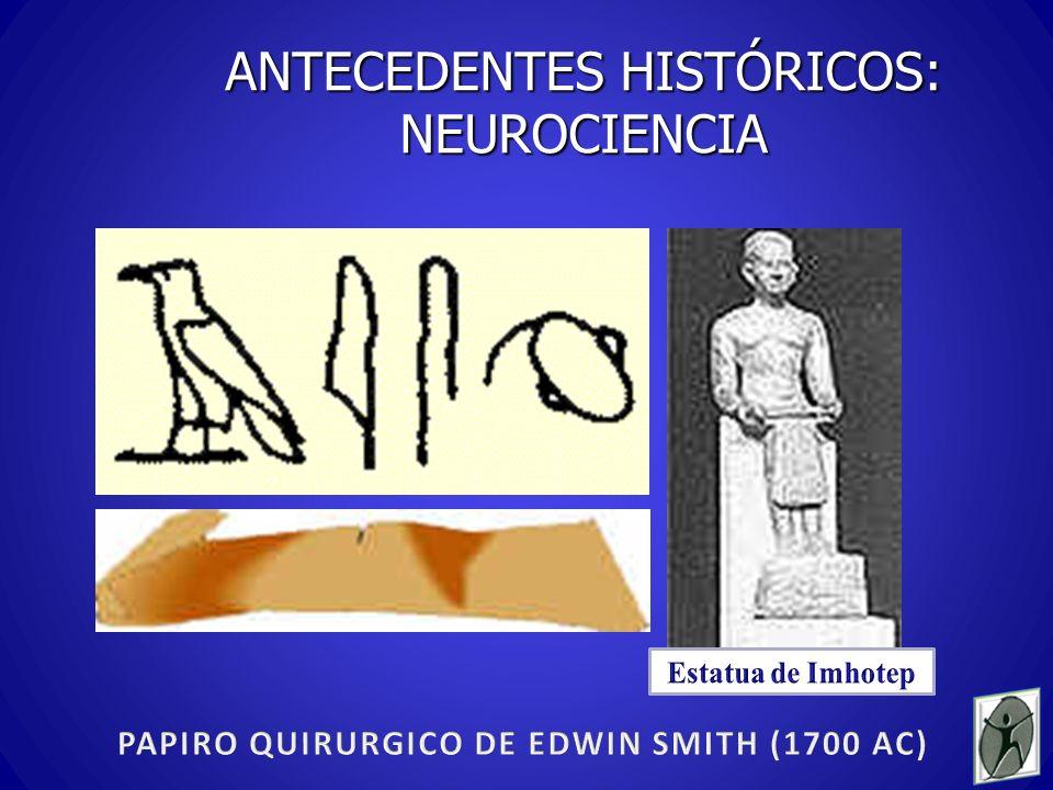 ANTECEDENTES HISTÓRICOS: NEUROCIENCIA