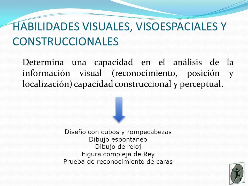 HABILIDADES VISUALES, VISOESPACIALES Y CONSTRUCCIONALES Determina una capacidad en el análisis de la información visual (reconocimiento, posición y localización) capacidad construccional y perceptual.