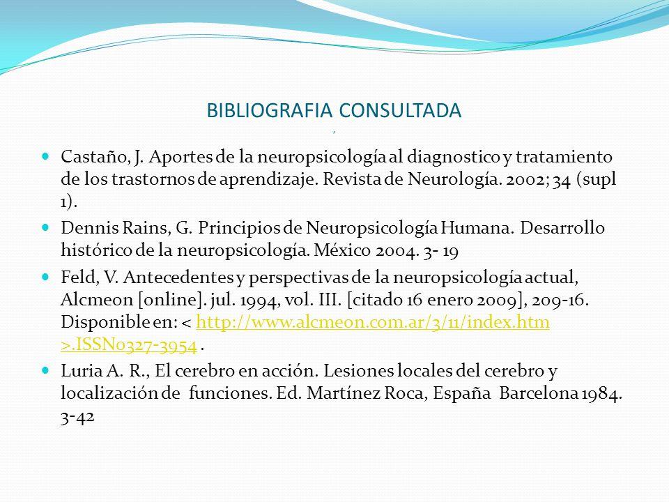BIBLIOGRAFIA CONSULTADA, Castaño, J.