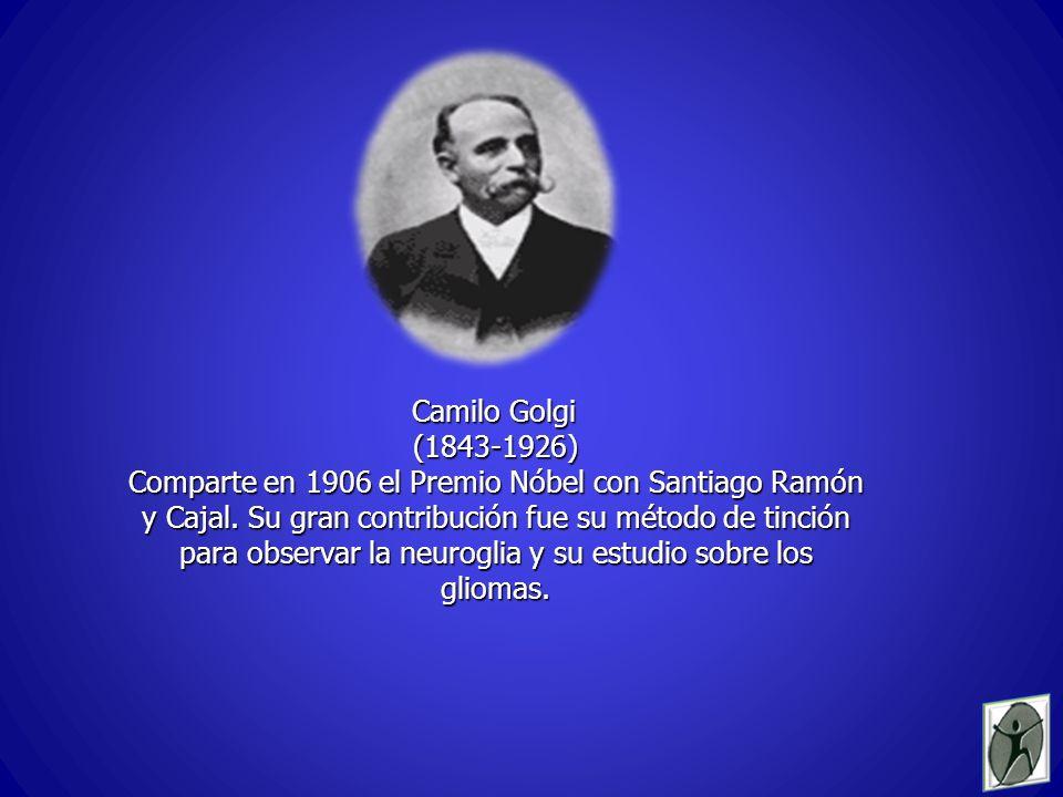Camilo Golgi (1843-1926) Comparte en 1906 el Premio Nóbel con Santiago Ramón y Cajal.