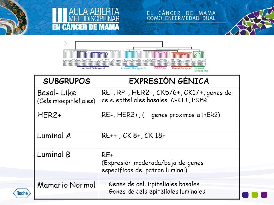 SUBGRUPOSEXPRESI Ó N G É NICA Basal- Like (Cels mioepitleliales) RE-, RP-, HER2-, CK5/6+, CK17+, genes de cels. epiteliales basales. C-KIT, EGFR HER2+
