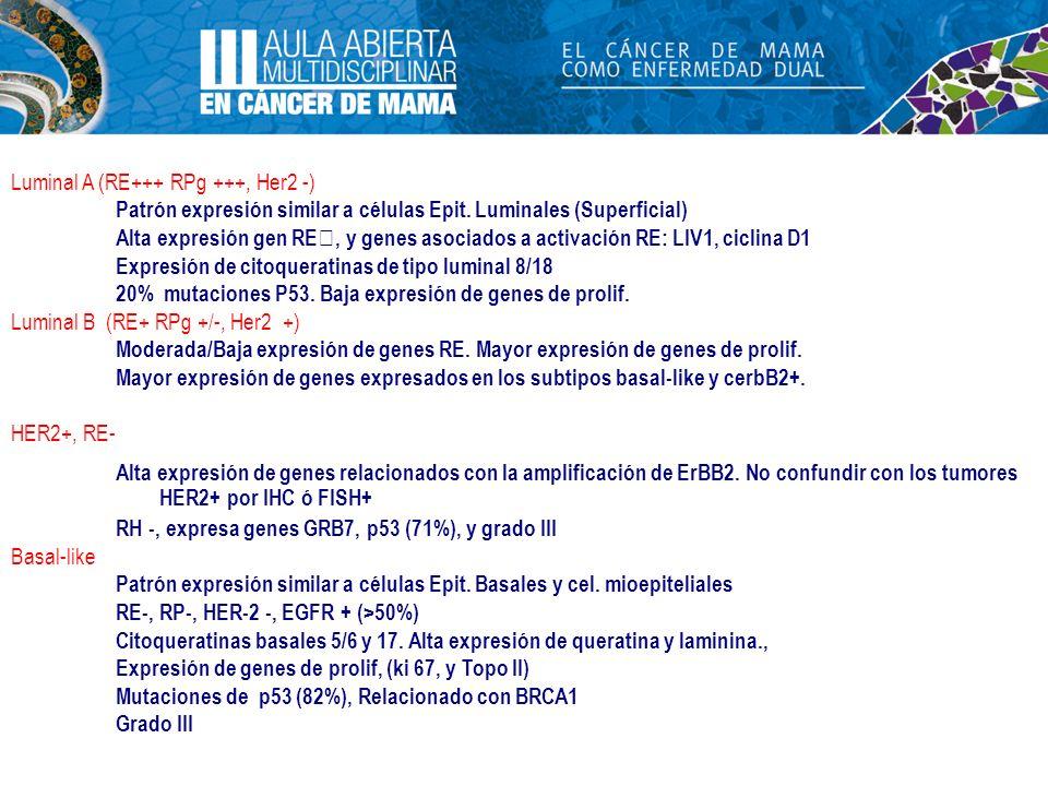 Luminal A (RE+++ RPg +++, Her2 -) Patrón expresión similar a células Epit. Luminales (Superficial) Alta expresión gen RE, y genes asociados a activaci