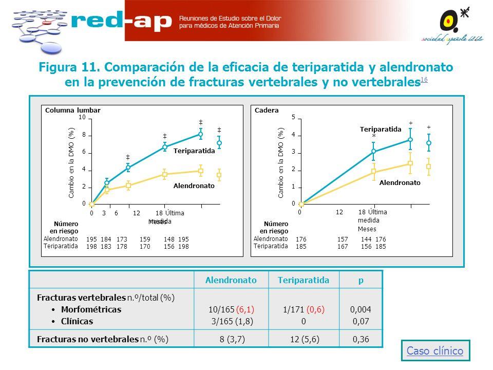 AlendronatoTeriparatidap Fracturas vertebrales n.º/total (%) Morfométricas Clínicas 10/165 (6,1) 3/165 (1,8) 1/171 (0,6) 0 0,004 0,07 Fracturas no vertebrales n.º (%) 8 (3,7) 12 (5,6)0,36 ++++ ++++ ++++ ++++ Columna lumbar 10 8 6 4 2 0 0 3 6 12 18 Última medida Meses Cambio en la DMO (%) Número en riesgo Alendronato Teriparatida 195 184 173 159 148 195 198 183 178 170 156 198 Teriparatida Alendronato + Cadera 543210543210 0 12 18 Última medida Meses Cambio en la DMO (%) Número en riesgo Alendronato Teriparatida 176 157 144 176 185 167 156 185 Teriparatida Alendronato + * Figura 11.