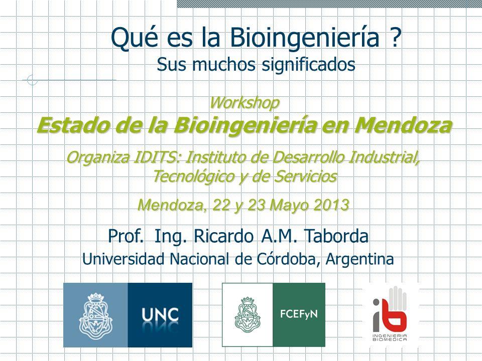 Qué es la Bioingeniería ? Sus muchos significados Workshop Estado de la Bioingeniería en Mendoza Organiza IDITS: Instituto de Desarrollo Industrial, T