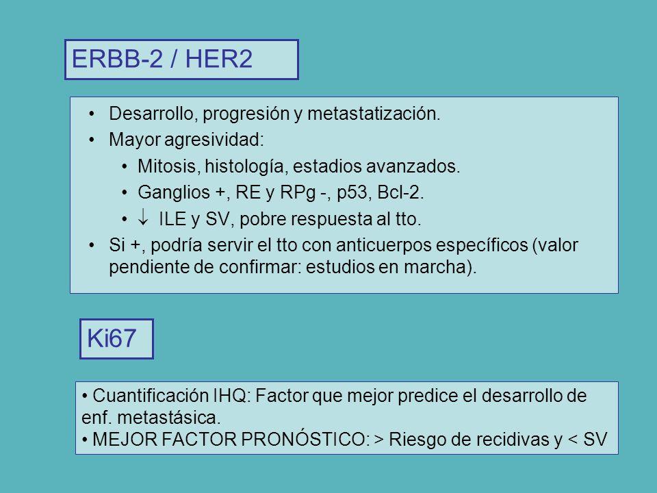 Desarrollo, progresión y metastatización. Mayor agresividad: Mitosis, histología, estadios avanzados. Ganglios +, RE y RPg -, p53, Bcl-2. ILE y SV, po